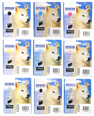 Epson Cartridge ''Husky'' 2880