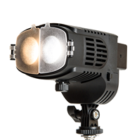 NanGuang CN-20FC LED Fresnel Light