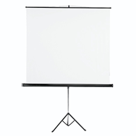 Hama Slide Projection Screen 180x180cm