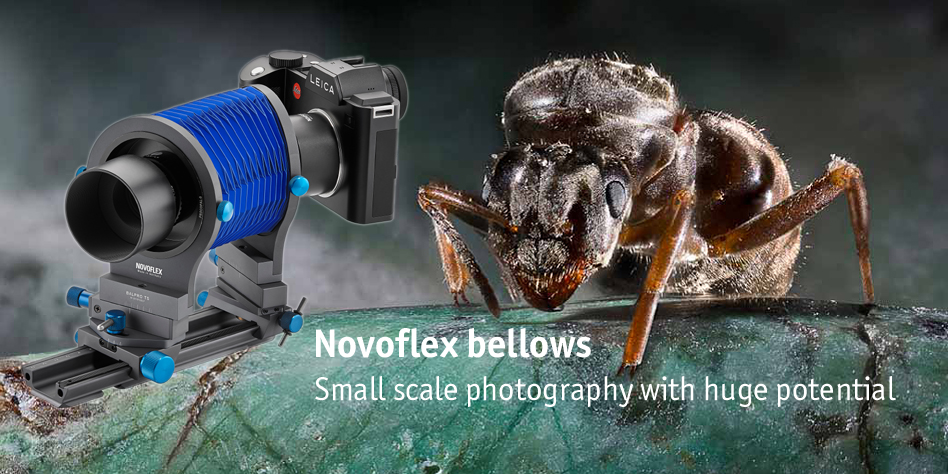 Novoflex bellows units for macro photography